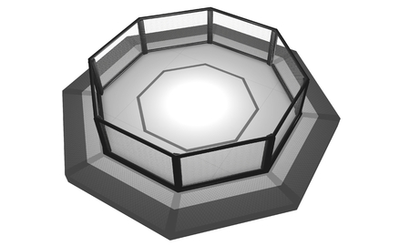 padding: 3D Rendered Illustration of an MMA, mixed martial arts, fighting cage arena.
