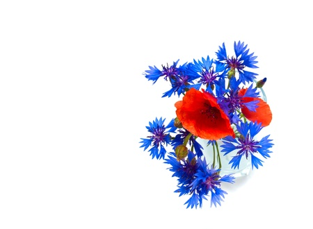summer field flowers bouquet isolated over white background photo