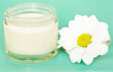 jar with cream and camomile Stock Photo - 10754056