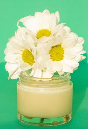 open jar with cream and camomile  flower on green background Stock Photo - 10754065