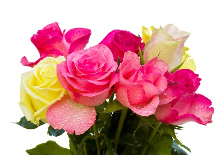 rosas amarillas: ramo de rosas sobre fondo blanco