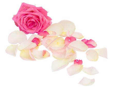 różowe z płatków na białym tle