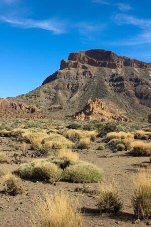 crater highlands: Valley of volcano Teide, Tenerife, Spain