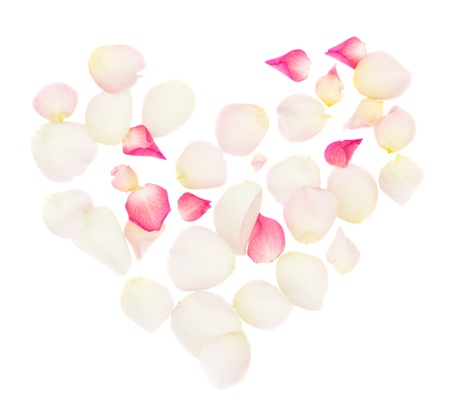 heart of petals isolated on white
