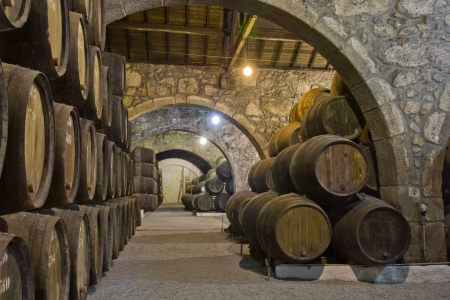cellar with wine barrels photo