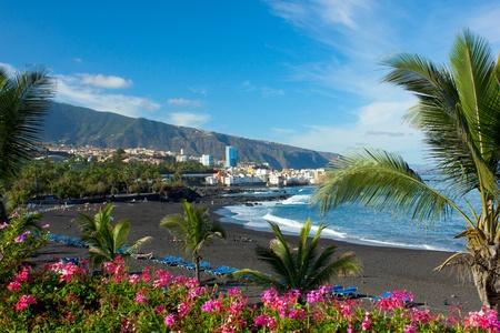canary islands: playa Jardin,Puerto de la Cruz, Tenerife, Spain