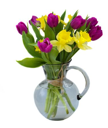 bouquet of tulips and daffodils  isolated on white background close up Stock Photo