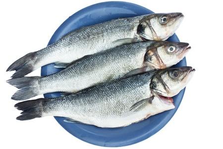 seabass: mar, pescados bajos en la placa de color azul sobre fondo blanco