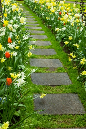 Stone walk way winding in flower garden Stock Photo - 13784559