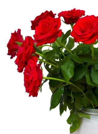 czerwone róże w wazonie na białym tle