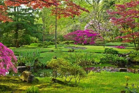 Jardín japonés en la primavera, La Haya, Holanda