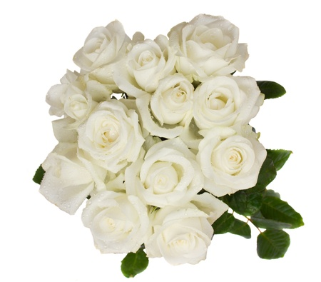 round bouquet of white roses isolated on white background