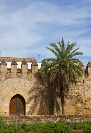medieval town wall of ancient Cordoba, Spain Stock Photo - 14296358