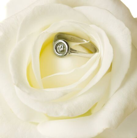 white rose and engagement diamond  ring close up photo