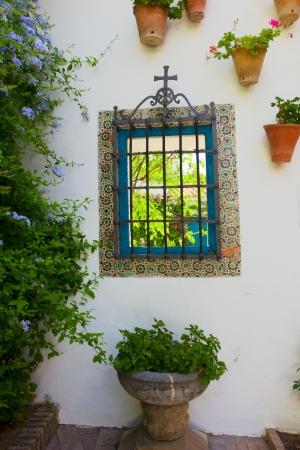window in  patio  so called andalusian cortyard  , Cordoba, Spain