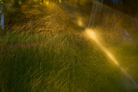 sprinkler of automatic watering grass and sunlit by sunset sun photo
