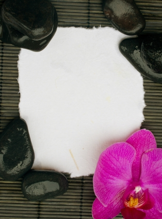 blank torned  page with orchid and spa stones photo