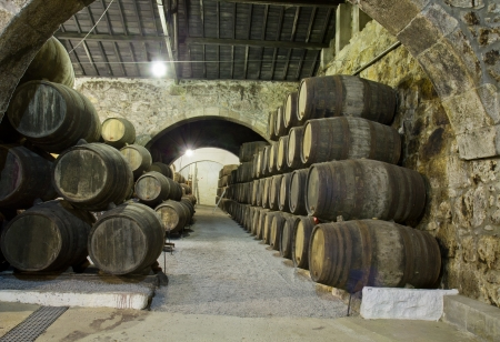 old cellar with rows of wooden barrels photo