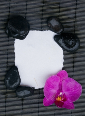 blank torned  page with orchid and spa stones Stock Photo - 14964564