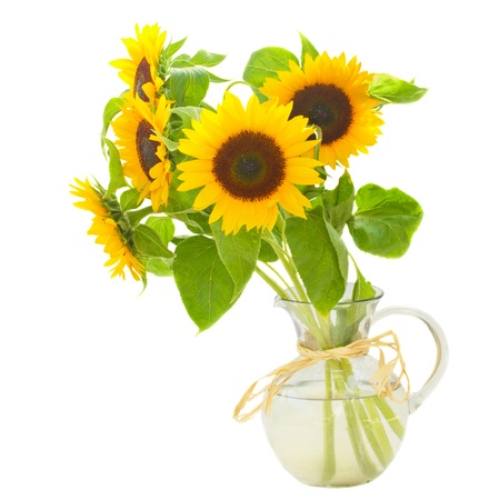 beautiful  sunflowers bouquet  in vase isolated on white background photo