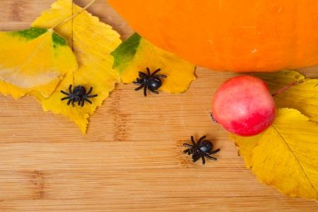 autumn background with leaves and spiders on wooden board photo