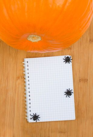 empty notebook with pumpkin and spiders on wooden board photo