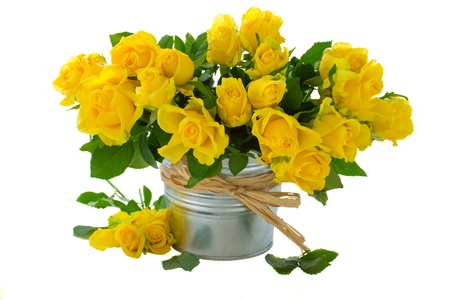 bouquet of yellow roses   isolated on white background photo