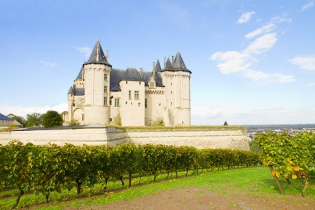 pays: Saumur castle and vineyards  in the Loire Valley, France
