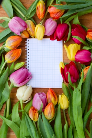 april flowers: fresh spring tulips laying on wooden table with notebook