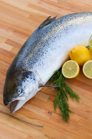 Atlantic Salmon Salmo solar  fish on wooden table Stock Photo - 17202741