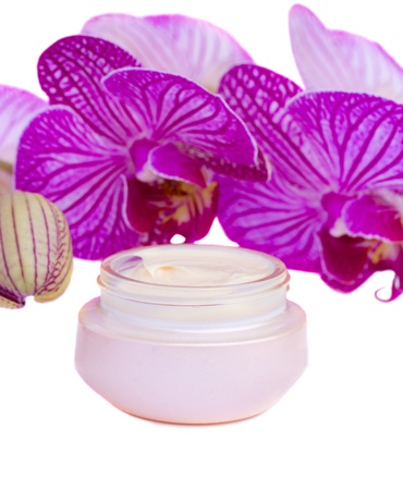 moisturizer cream and orchid Stock Photo - 17437954
