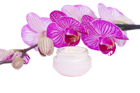 moisturizer cream and orchid flower Stock Photo - 17499659