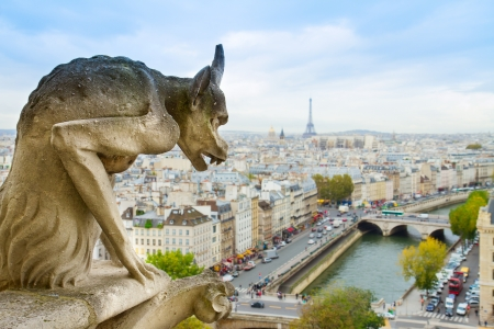 Gargoyle of Paris on Notre Dame Cathedral church, France photo