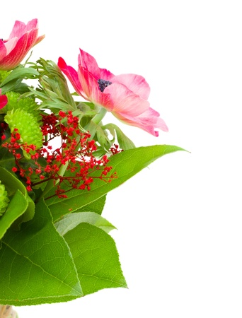 bouquet with  red anemone flowers  and lwaves isolated on white background photo
