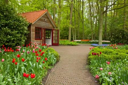 Colorful spring flowers in dutch  garden Keukenhof in Holland Stock Photo - 18404593