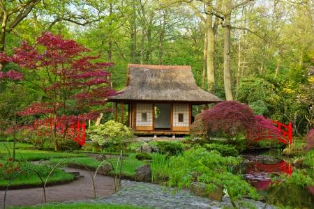 ponte giapponese: Vista giardino tipico giapponese, Den Haag, Olanda