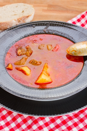 hungarian dish goulash soup served in plate close up Stock Photo - 18626792