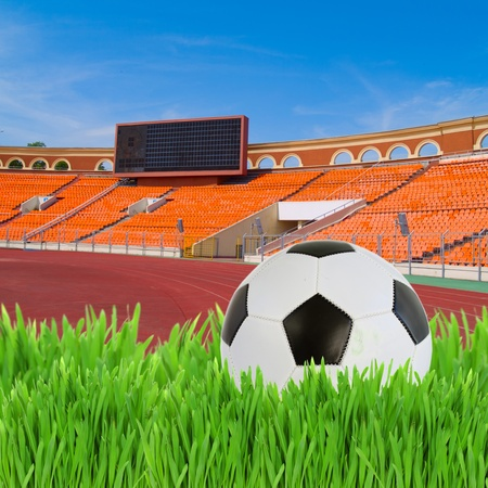 black and white soccer ball in green grass on football stadium photo