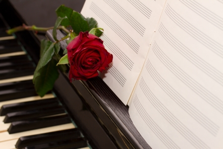single songs: open empty notes paper with red rose   on vintage piano Stock Photo