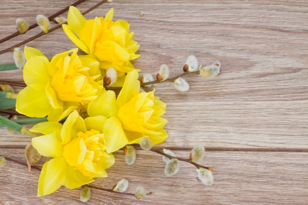catkins: bouquet of yellow narcissus with catkins on wooden table Stock Photo