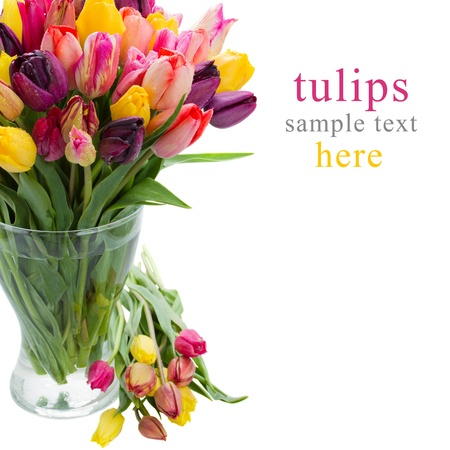 tulip flowers in glass vase isolated on white background photo