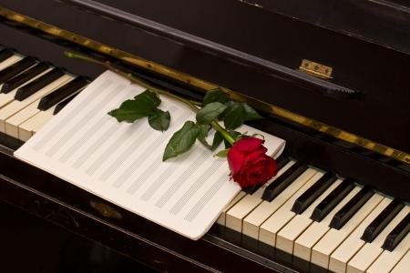 fortepian: puste papieru notatki z jednym czerwona róża na vintage fortepian
