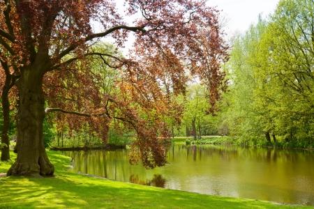 nature landscape: Vondel park - famouse location of  Amsterdam, Holland