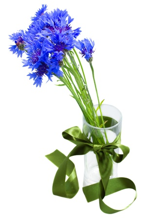 blue corn flowers bouquet in vase isolated on white background photo