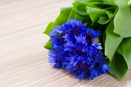 blue corn flowers with green leaves on wooden table photo
