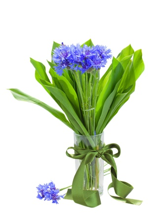 navy corn flowers bouquet in vase isolated on white background photo