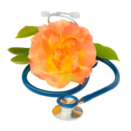 Health care concept - blue stethoscope with rose isolated on white background photo