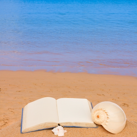 note book: open book on a sea shore  - leisure concept
