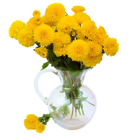 bouquet of yellow mums in glass vase isolated on white background photo
