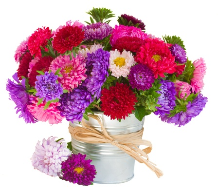 bouquet of red and violet  aster flowers in pot   isolated on white background photo